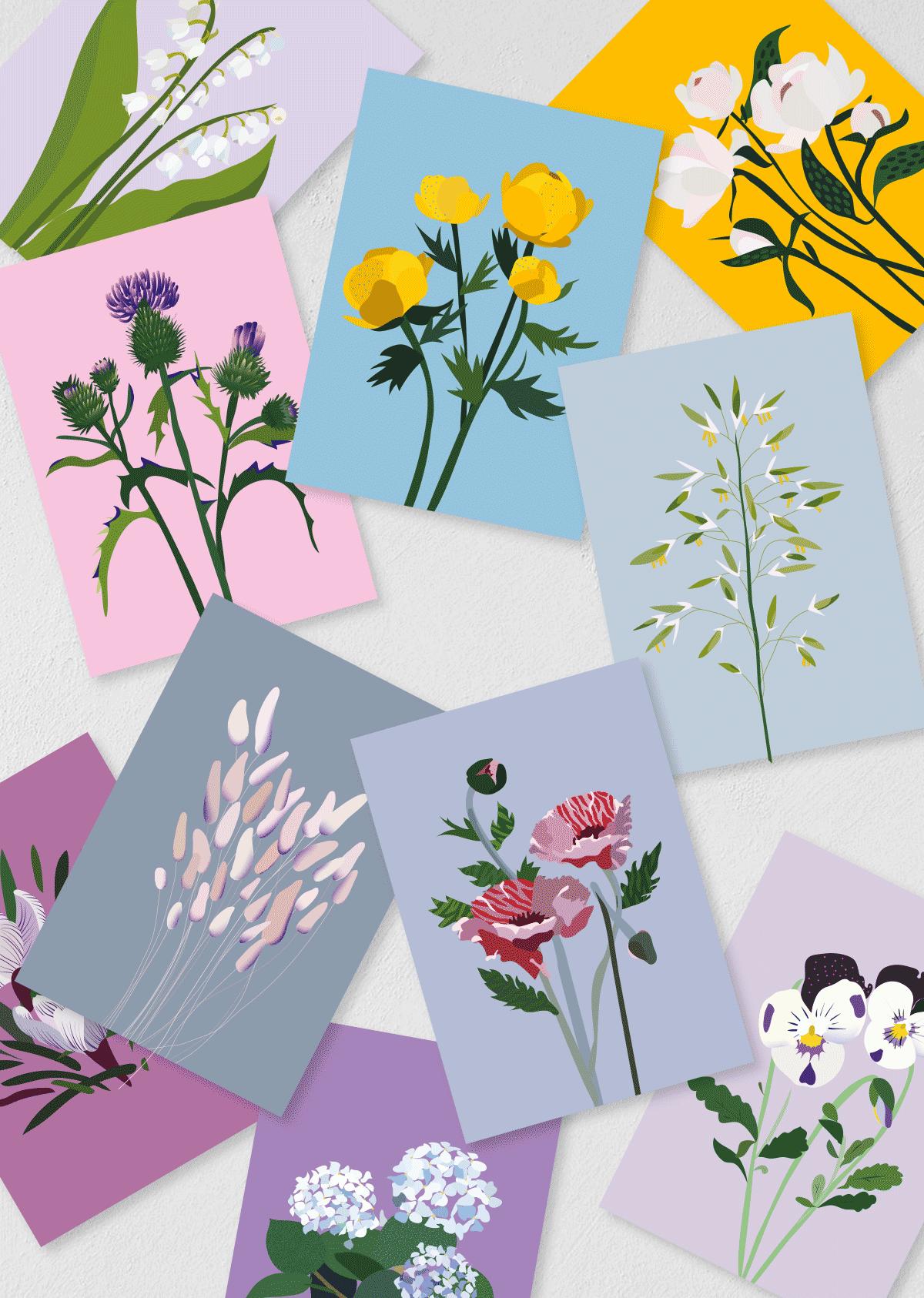 """Postkaardid """"Aialilled ja Põllulilled"""" 10 tk"""