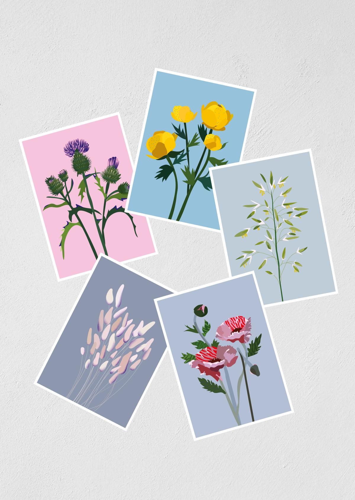 """Postkaardid """"Põllulilled"""" 5 tk"""
