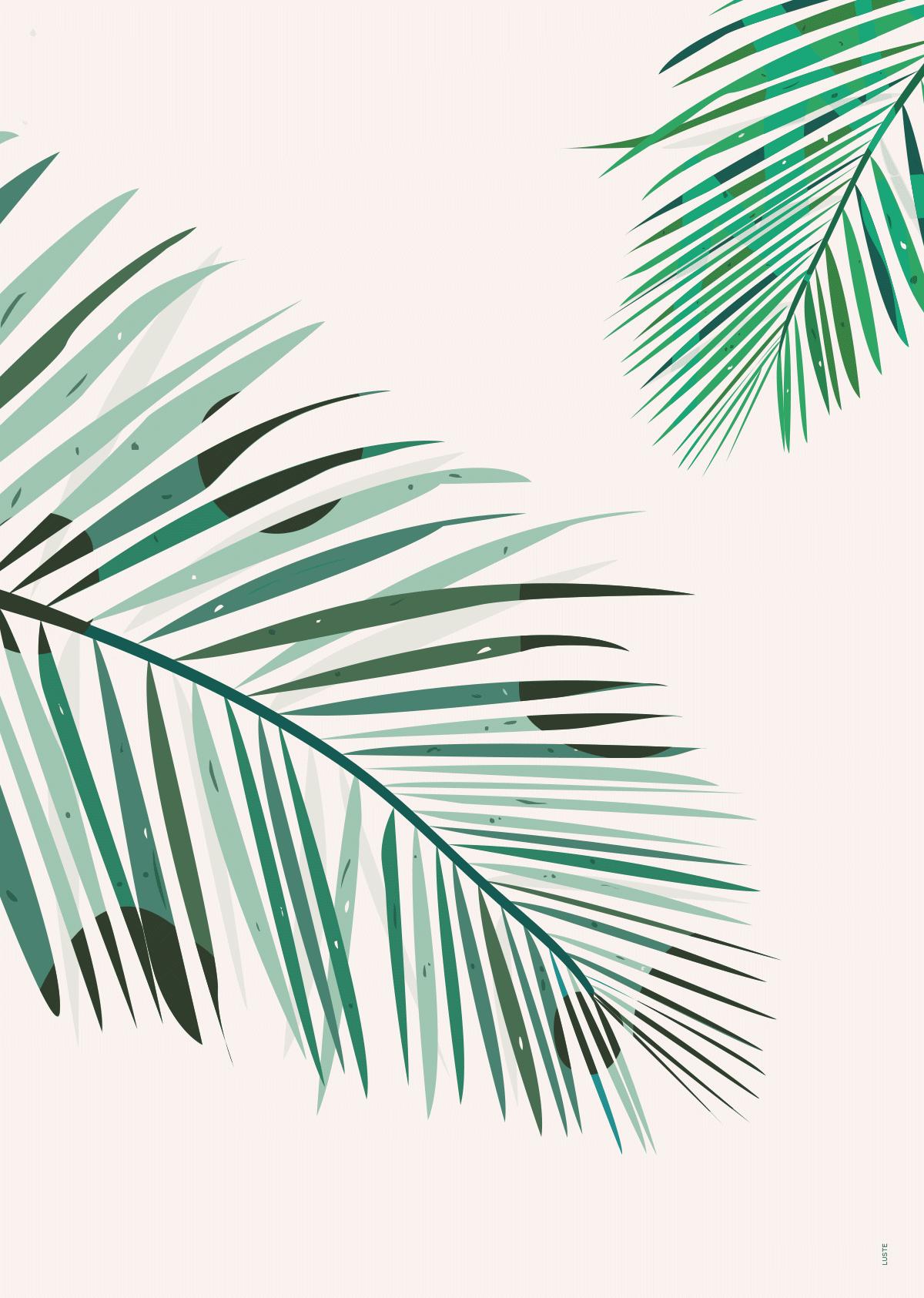 "Plakat ""Palm"""