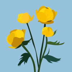 Lillekalender (sama stiil, uued taimed)