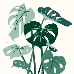 Rohelised taimed